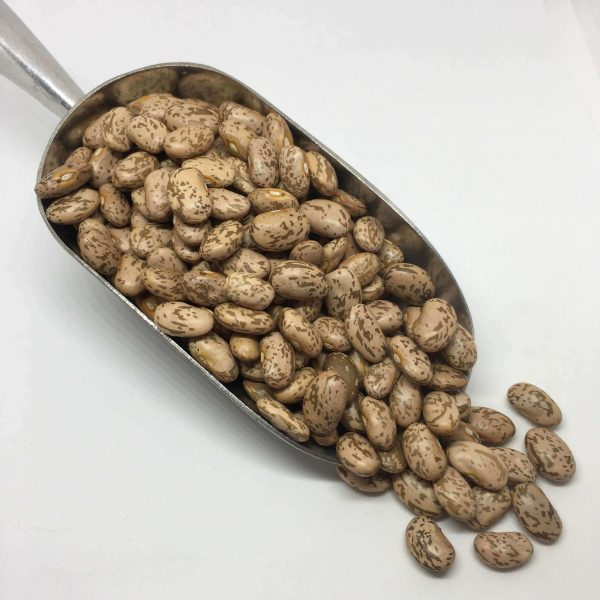 Pack-It-In-Zero-Waste-Living-Pinto-Beans