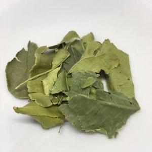 Pack-It-In-Zero-Waste-Living-Kaffir-Lime