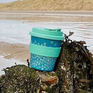barnacles-seaside