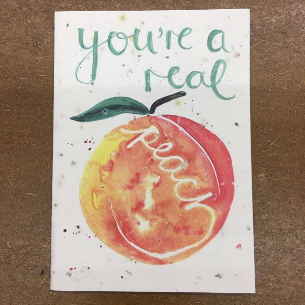 Pack-It-In-Zero-Waste-Living-You_re-a-Real-Peach